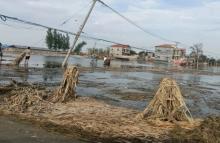 招募 | 加入壹哪个平台有易胜博安全家园计划,一起助力河南洪涝灾害灾后重建