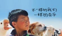 净水计划 | 小动物们和小男孩们的乡村童谣
